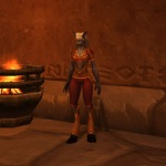 A collection of my outfits prior to mogging came out - the Bonechewer set (leather).